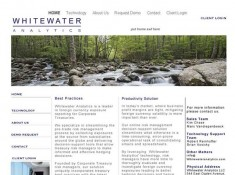 Whitewater Analytics image of website
